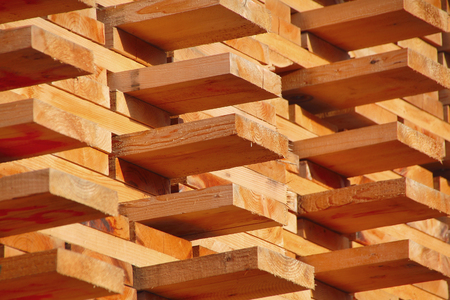 Pile of freshly sorted manufactured wood ready for market.