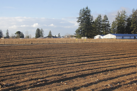 seeding: Land is tilled to prepare it for Spring seeding.