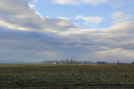 dormant: Dormant agricultural fields spread out over a Washington rural landscape. Stock Photo