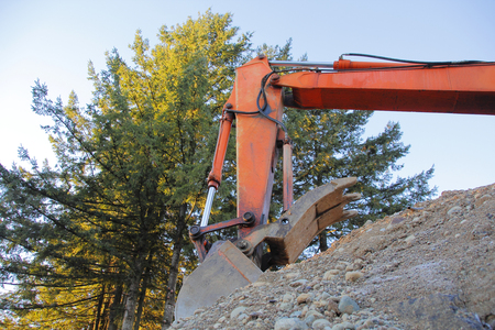 An industrial shovel is used to clear land in a forested area.