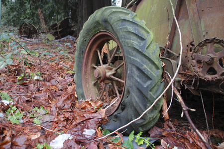 farm equipment: An old fashioned spoked tire from the 1920s is part of the remnants of farm equipment.