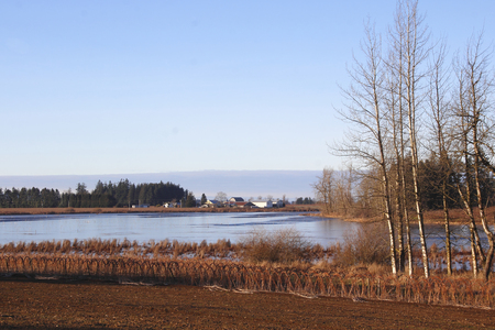 poisoned: Judson Lake is a lake shared by Canada and the US that has been poisoned by decades of lead from buckshot.
