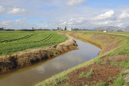 dikes: Dikes and canals are used to collect water during the heavy rainy season for agricultural use. Stock Photo