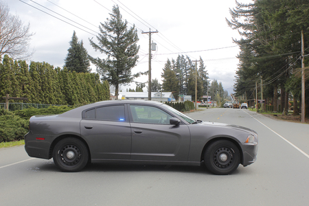 An unmarked police cruiser blocks a road after a tree fell during a storm on March 9, 2016 in Abbotsford, British Columbia.