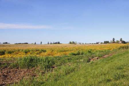 wide open: A wide open American rural landscape with fields and farms.