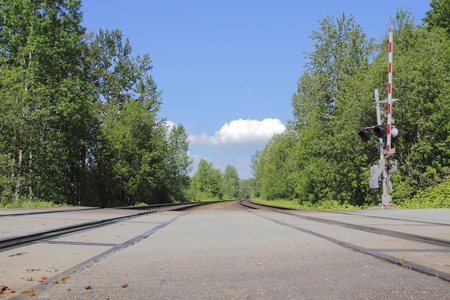 low angle view: Low angle view of two train tracks crossing a road intersection.