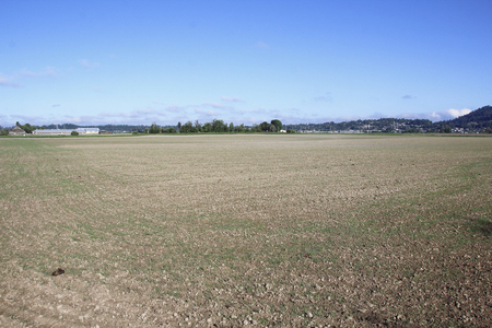 unoccupied: Unseeded, agricultural land is ready now for planting.