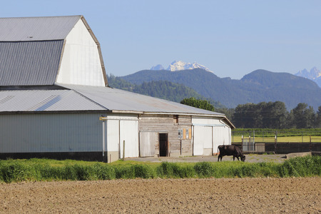 is established: A well established farm building with a mountain range as a backdrop.