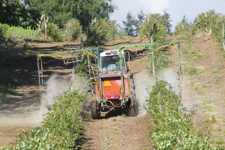 Fungicide and Foliar nutrient applications are applied to a blueberry crop Stock fotó
