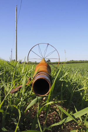 unattached: Vertical view of an irrigation pipe used for watering crops.