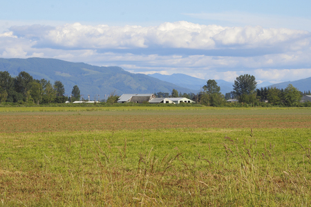 washington landscape: Agricultural land is the central landscape in the Clearbrook, Washington region. Stock Photo