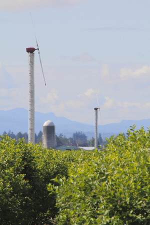 generate: Wind turbines generate clean energy for agricultural use.