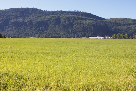 acreage: Acres of grassland stretched across a country valley. Stock Photo