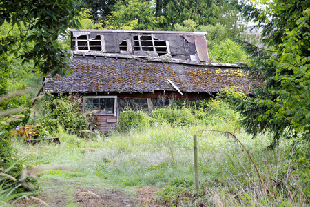 neglected: Overgrown and neglected, a farm house slowly succumbs to nature. Stock Photo