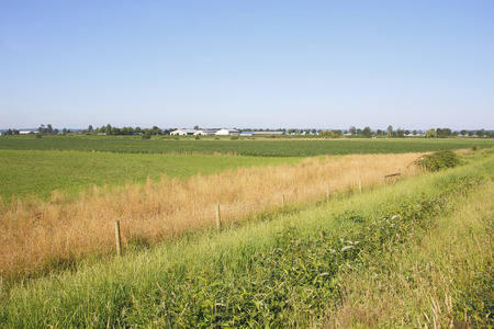 an agricultural district: Fertile, agricultural land in British Columbias Fraser Valley district.