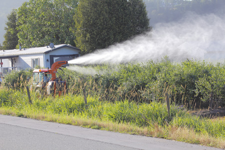 plan �loign�: Long shot sur une couverture �paisse de pesticides pulv�ris�s sur une culture. Banque d'images
