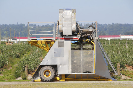 maneuverable: Profile look at a small, portable berry picking machine used where rows of fruit are narrow.
