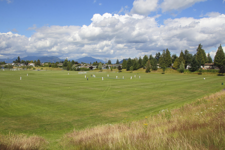 recreational sports: Acres of groomed turf are used for recreational sports in a city.