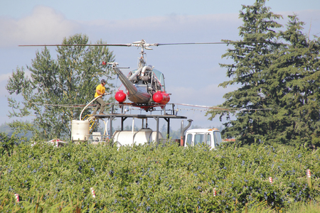 refilling: Crew members work together refilling a crop duster with insecticide in Sumas, Washington on July 7, 2016.