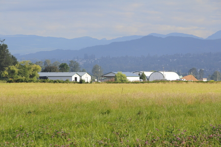 mountainscape: A field of grass with farm buildings surrounding by a mountainscape. Stock Photo