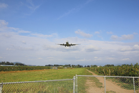 jetliner: A Jetliner descends over a blueberry field as it approaches a rural airport.