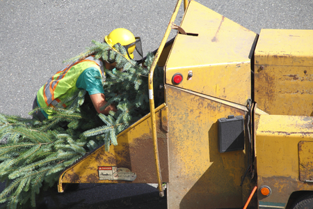 loads: An operator loads tree branches into a wood chipper or woodchipper.