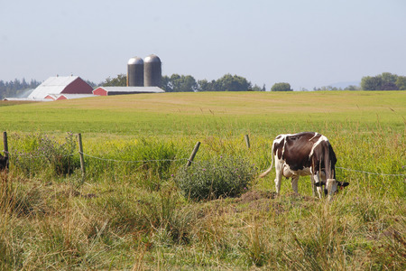 acres: Acres of prime grazing land for Washingtons dairy industry.