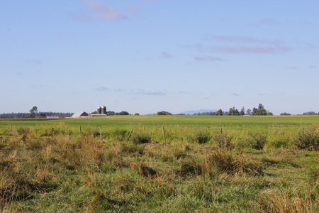 washington landscape: Wide open farm acreage comprise a landscape in Washington State.