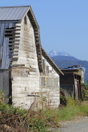 Vertical view of an old, weathered barn standing in front of a distant snow capped mountain.