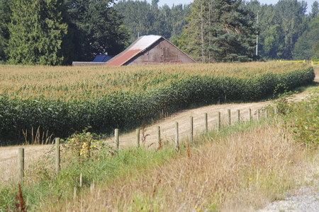 Uneven ground display acres of rolling agricultural land. 스톡 콘텐츠