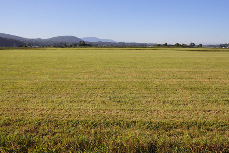 acres: The hay has been cut and the field will yield one more harvest before winter. Stock Photo