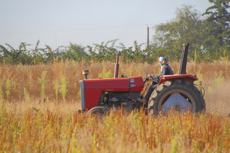 Dust, fumes and noise are controlled when a farmer wears a scarf and headphones while working.