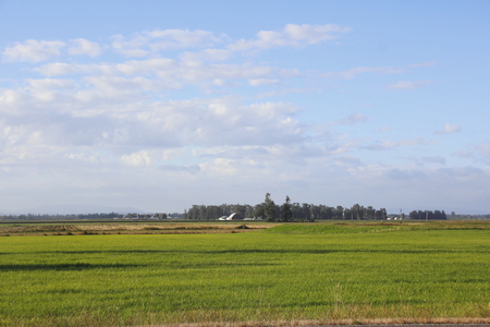 washington landscape: An expansive, wide open rural Washington landscape.