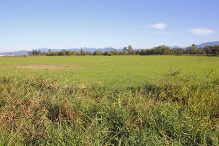 太平洋岸北西部の農村風景です。 写真素材