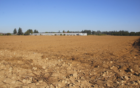 cleared: Fields have been cleared after severe drought and are prepared for replanting.
