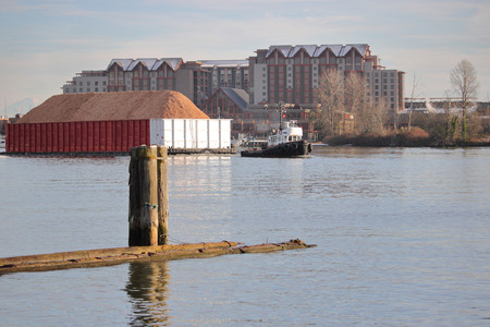 A tug boat hauls a large barge filled with sawdust on a river cutting through a major city. Stock Photo