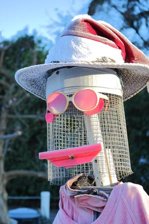 espantapajaros: Un espantapájaros de aspecto único completo con gafas de sol y sombrero. Foto de archivo