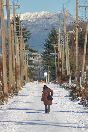 telephone poles: The Arbutus Greenway or Line, a converted rail line in Vancouver, Canada during the winter. Stock Photo