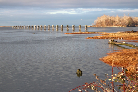 fraser river: The southwest side of Richmond and a Fraser River tributary in winter.