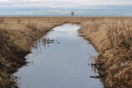 A man made canal that drains excessive water from a bog into the ocean