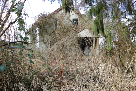 accessed: Overgrown and left for ruin, a residential property will be accessed for strictly land value. Stock Photo