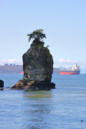 The Valiant Summer, a bulk carrier sailing under a Singapore flag is anchored in Vancouver, Canadas English Bay behind Siwash Rock, an outcropping on March 30, 2017.