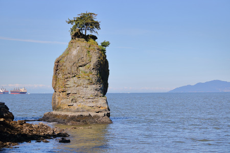 An unusual rock outcrop with vegetation on the shores of the Pacific ocean.