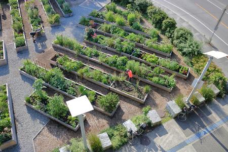 庭師の都市庭プロットする傾向の高い、広角視点。 写真素材
