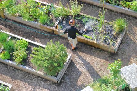 庭師都市庭プロットする傾向があります。