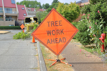 A large, English outdoor sign warns people that tree work is underway in the area. Stock Photo