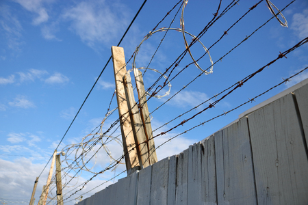Sharp, coiled barbed wire is mounted on top of a wooden fence for security purposes.