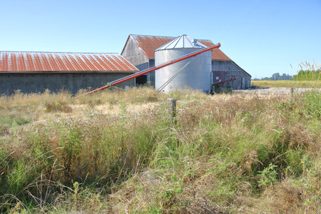 A modern small metal silo stands beside an old weathered barn. Stock Photo