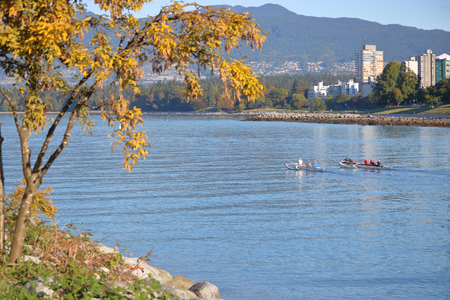Fall colors on Vancouvers English Bay as rowers travel west on the inlet.