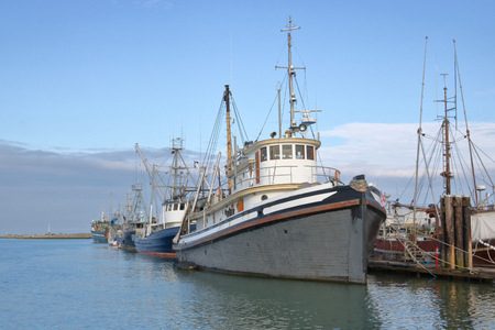 A fleet of traditional wooden fishing boats are moored at a large private marina.